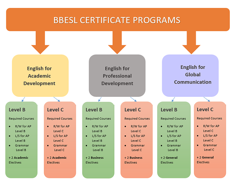 Certificate Program graphic. See description below