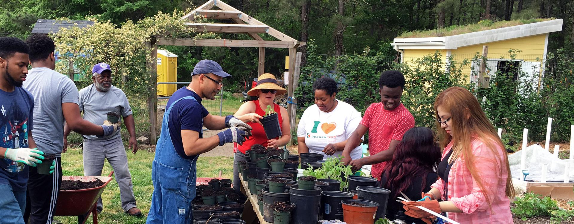 Students potting plants at Briggs Community Gardens